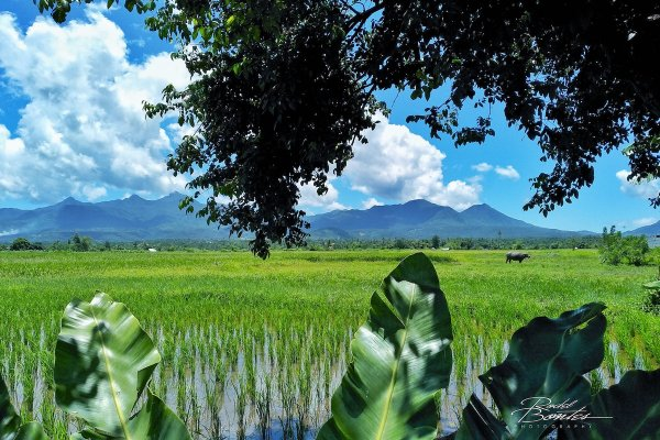 Biliran Travel Guide photo by Rodel Bontes via Flickr CC