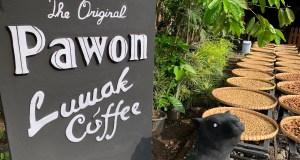 The Original Pawon Luwak Coffee