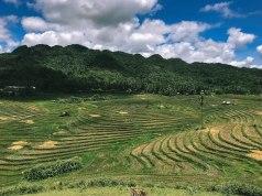Cadapdapan Rice Terraces in Bohol