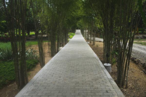 A peaceful walk from beach to lobby- Bluewater Panglao by Fabian Encarnacion