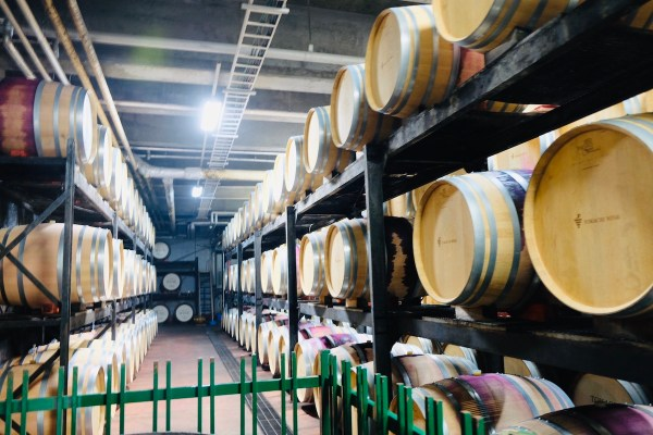 Ikeda Wine Castle Tour