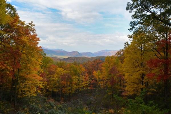 Smoky Mountain National Park in TN