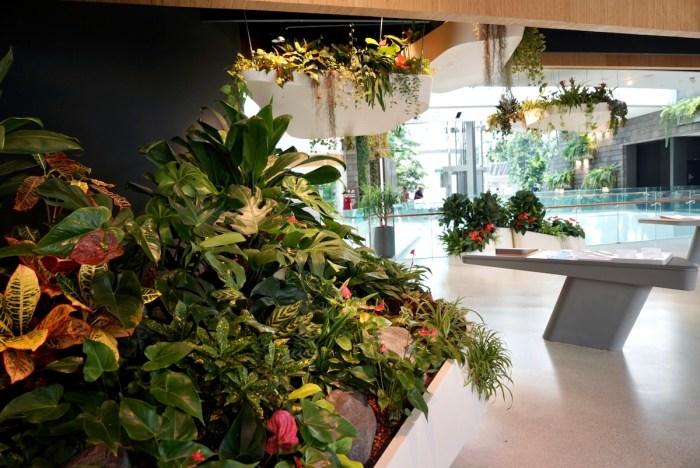 Jardín dentro del aeropuerto Jewel Changi