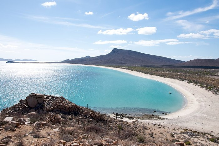 The beach on Espiritu Santo Island in La Paz, Mexico by Sam Beebe: Ecotrust via Wikipedia CC