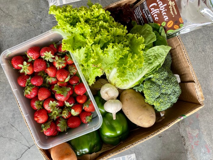 Buy Fresh Fruits and Vegetables Online via Session Groceries App