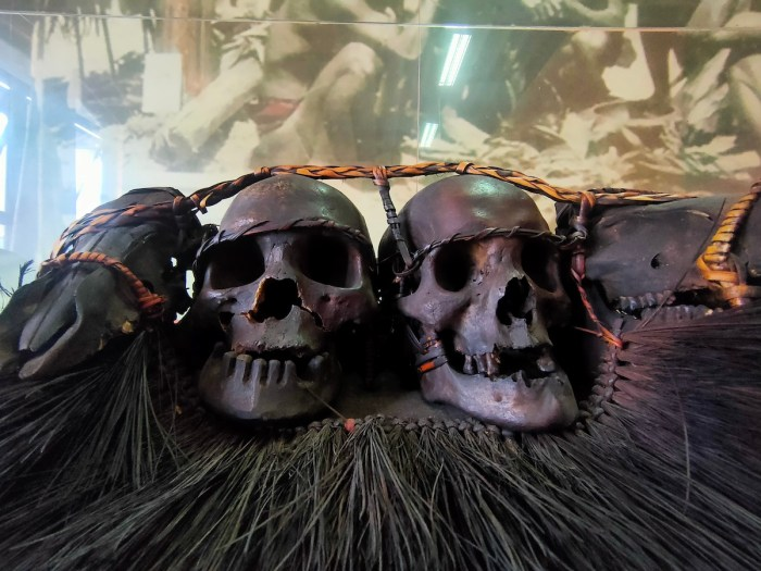 Collection of skulls from Cordillera Headhunters