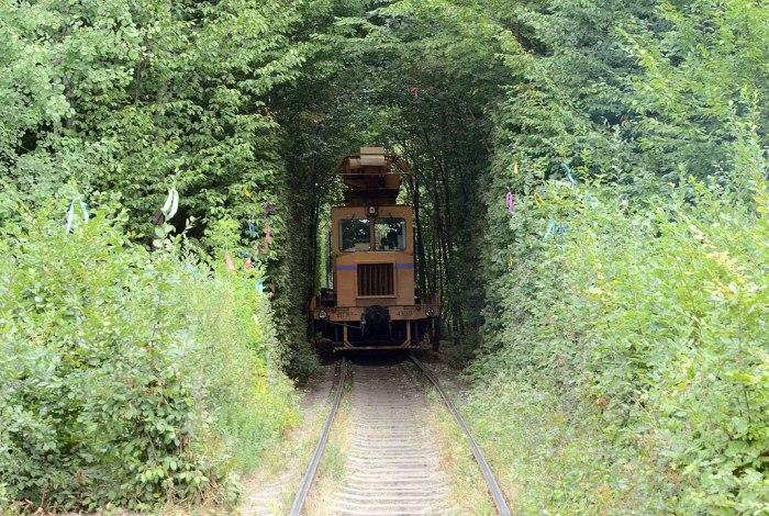 Tunnel of Love in Klevan photo via Wikipedia CC