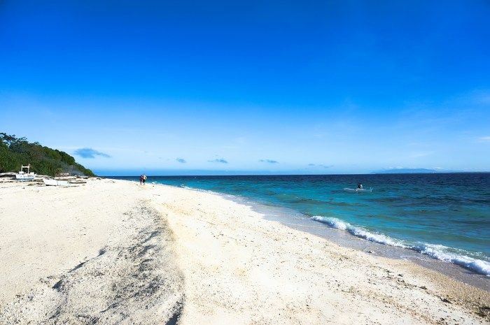 Balicasag Island in Bohol photo via Depositphotos