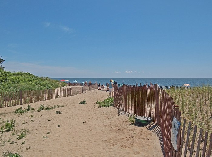 Hammonasset Beach State Park by rickpilot_2000 via Wikipedia CC