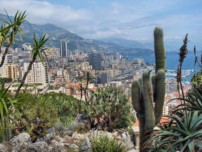 By Jordin Johnson Jardine Exotic de Monaco via Wikipedia CC