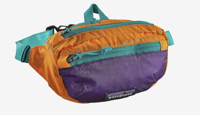 Patagonia Lightweight Mini Hip Pack