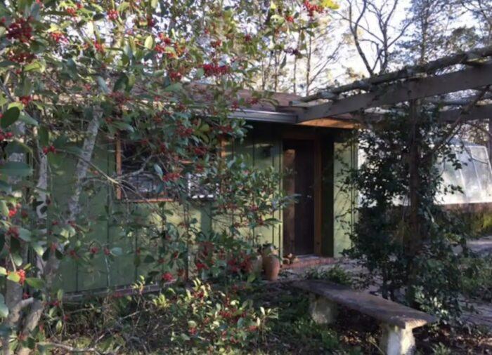 Macon GA The Greenhouse Airbnb