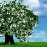 Rio+20: Economia Verde ou Economia Solidária?