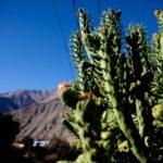 <i>Valle del Elqui</i> e as coisas que deixamos para trás