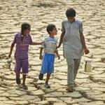 Da mudança climática à crise alimentar