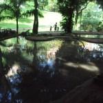 <i>Cartas da Guanabara</i>: O Parque Guinle