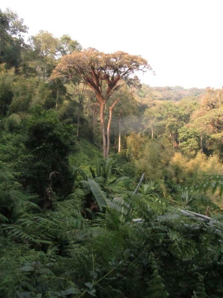 kabira national park