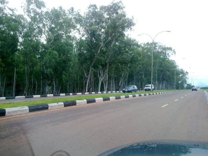 Top five most ideal place for picnic in Enugu