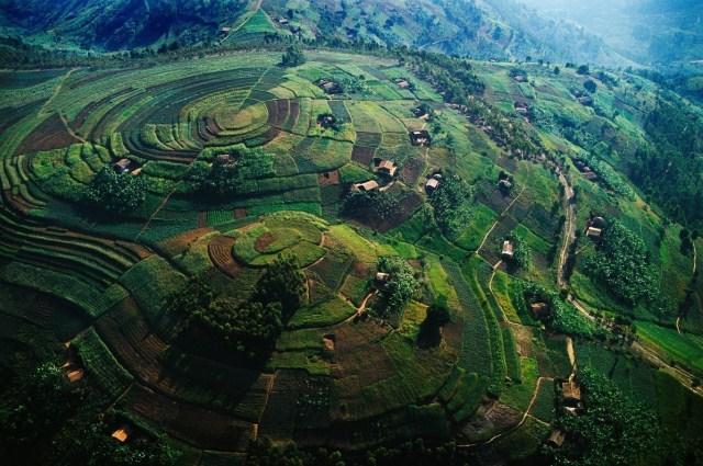 "Africa's Oldest National Park ""Virunga National Park."