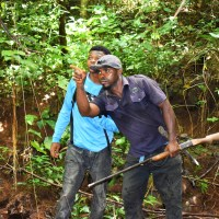 Down The Valley: Exploring Ogba Ngwu Forest