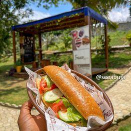 Fresco Sandwich, Sarius Palmetum Garden Abuja (4)