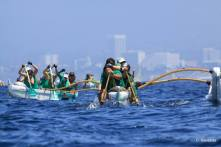 Rio wahine 2014 in CA