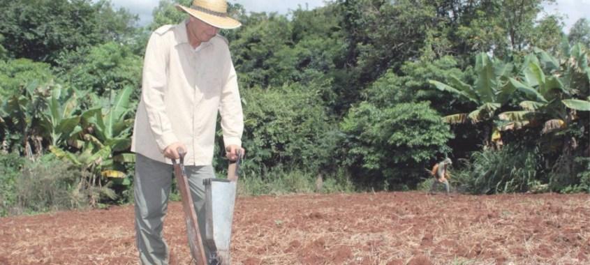 Crédito fundiário: Paraná lidera compra de terra