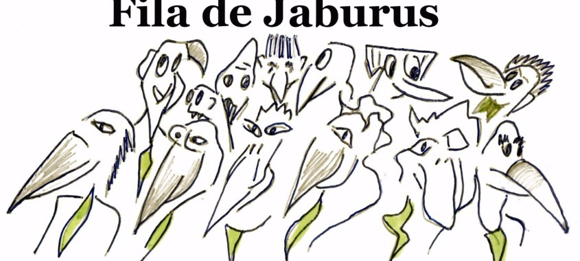 O golpe dos jaburus