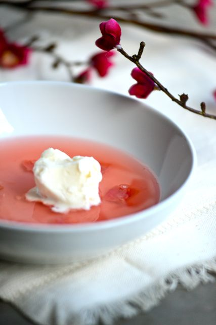 Rhubarb Soup for Spring
