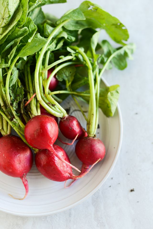 Radishes on Plate Vertical
