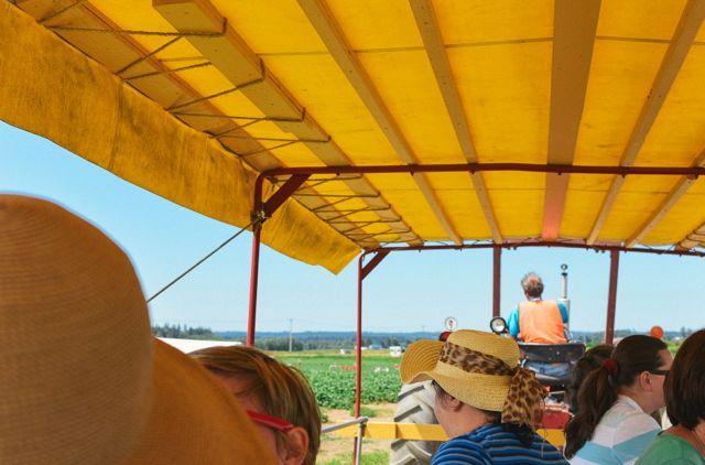 Tractor at Biringer Farm