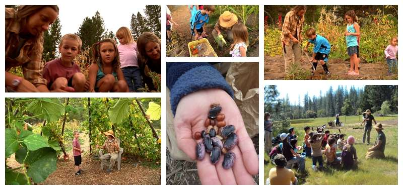 Living Lands Agrarian Network Food Love Project Farm