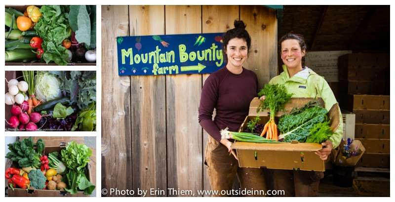 Nevada City CSA Mountain Bounty Farm