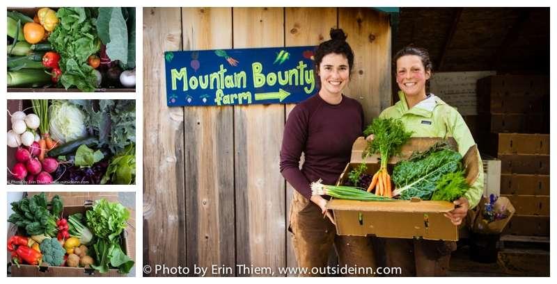 Nevada City CSA Mountain Bounty Farm