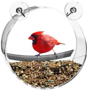 Contempo Creatures Bird Feeder