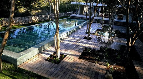 Several Trees by the Pool Source: Mental Floss