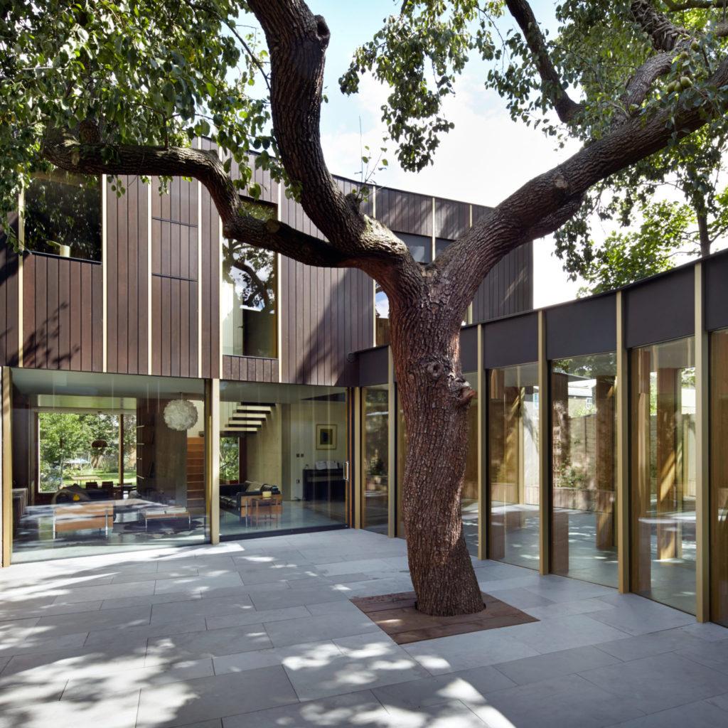 Tree in Patio Source: Dezeen