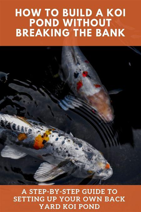 how to build a koi pond cheap