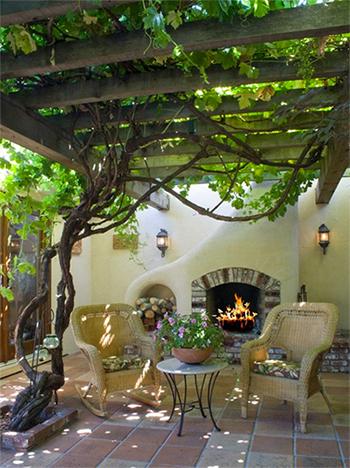 grape vines shade