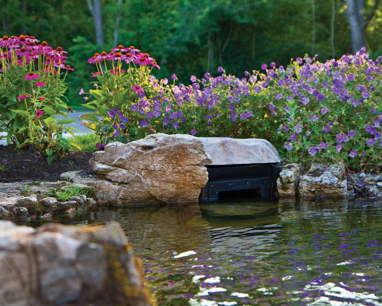 best pond skimmer