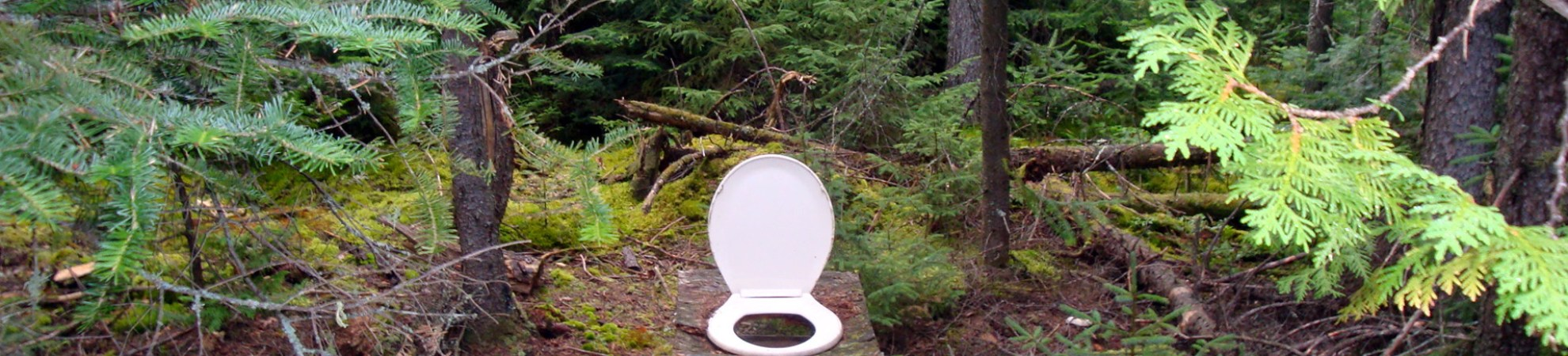 Camping outdoor toilet