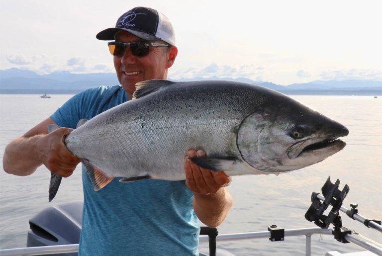 man holding chinook salmon bc king