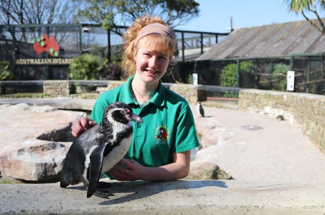 """4 ผู้ดูแลสวนสัตว์หัวใจสุดแกร่งยอม """" กักตัวเอง """" ดูแลสัตว์โดย """" ไม่กลับบ้าน """" ช่วงล็อคดาวน์ ในอังกฤษ 👩🏻🐼🐨🦁🤲🏻❤️🏡🚫🇬🇧"""