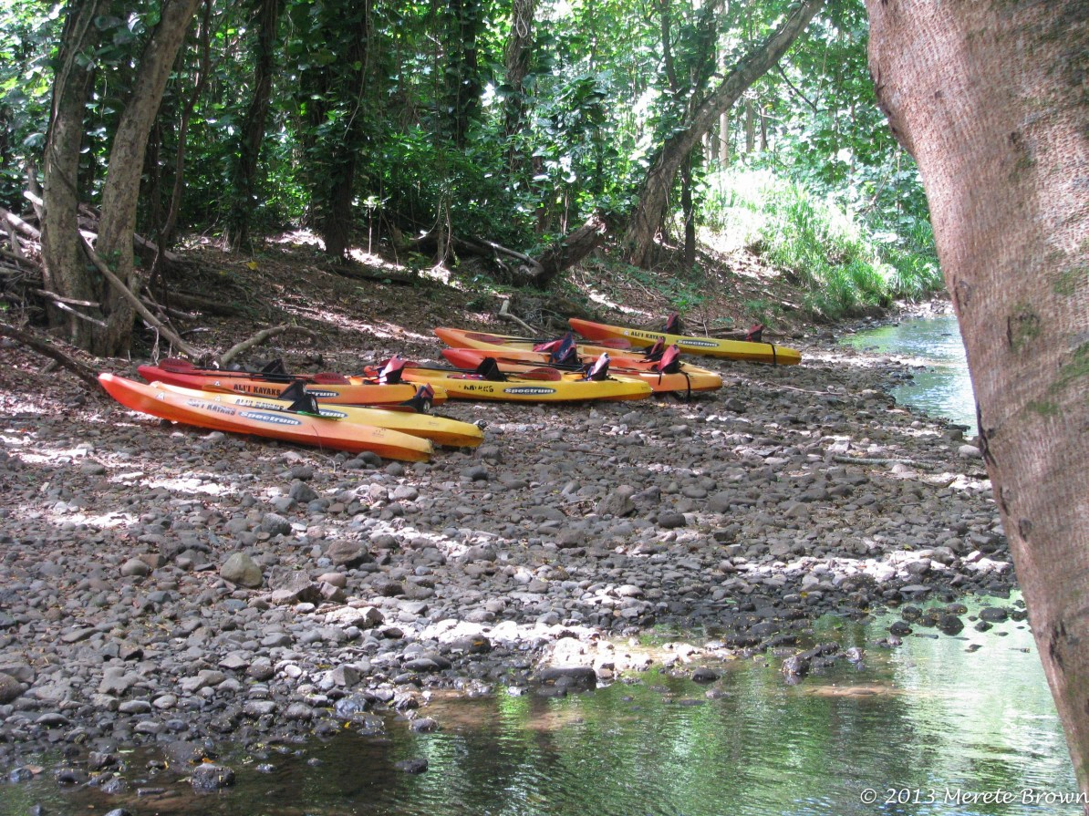 Wailua River Kayak