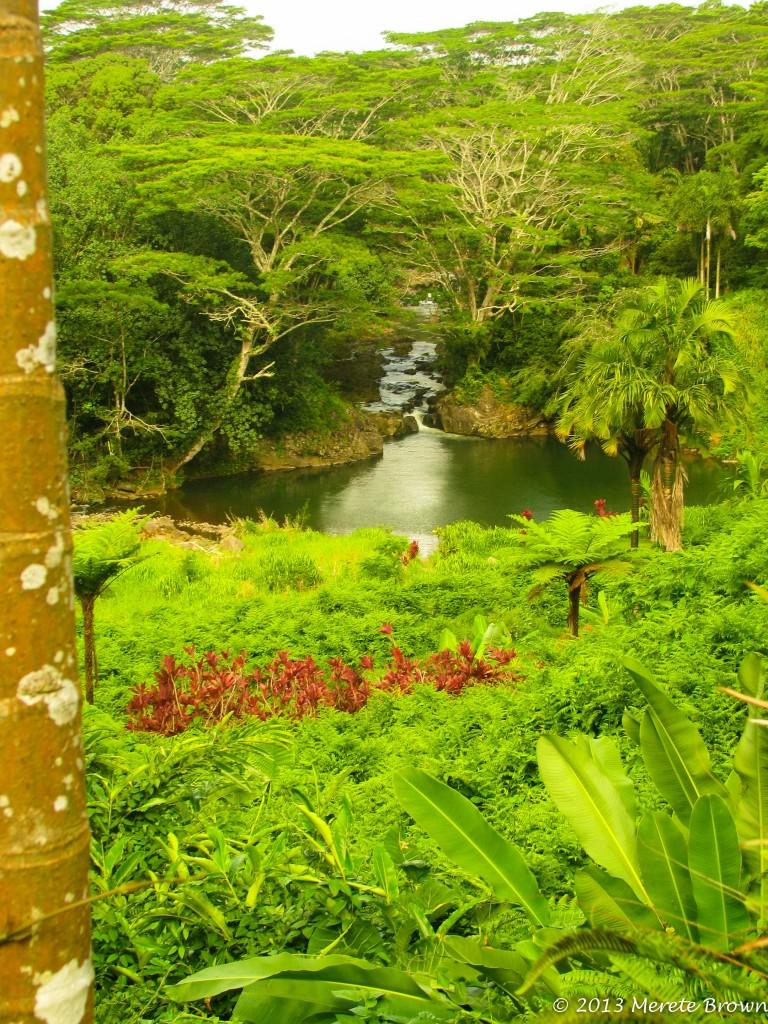 Kauai Hindu Monestary