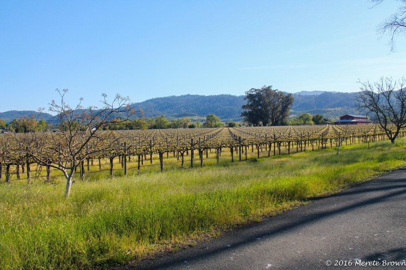 Napa, California