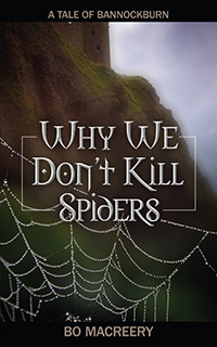 Why We Don't Kill Spiders, by Bo Macreery