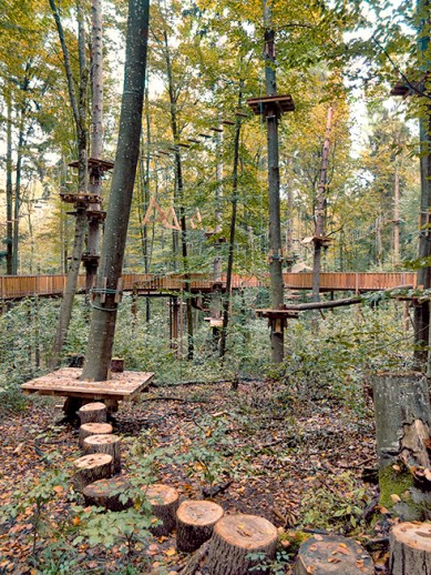 2_ropes_course_490