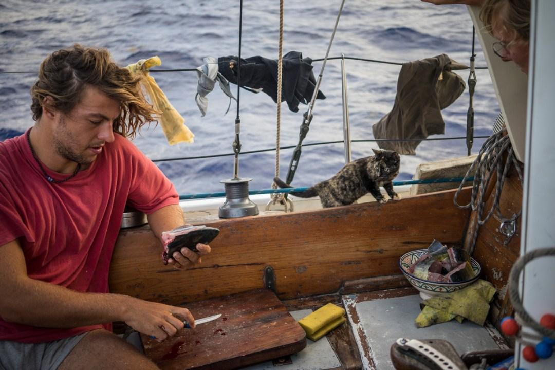 Altantik | Segelboottrampen | living Utopia | ohne Flugzeug um die Welt |Trampen