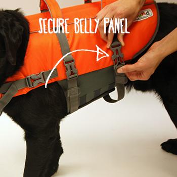dog life jacket fitting instructions